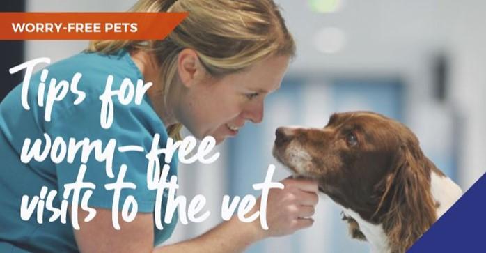 worry-free-pets