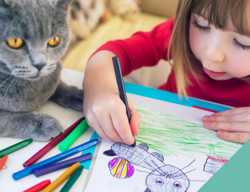 Animal activities to keep your children occupied during the summer holidays